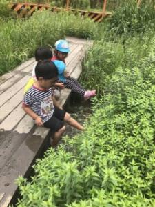 トトロ幼稚舎の日常風景